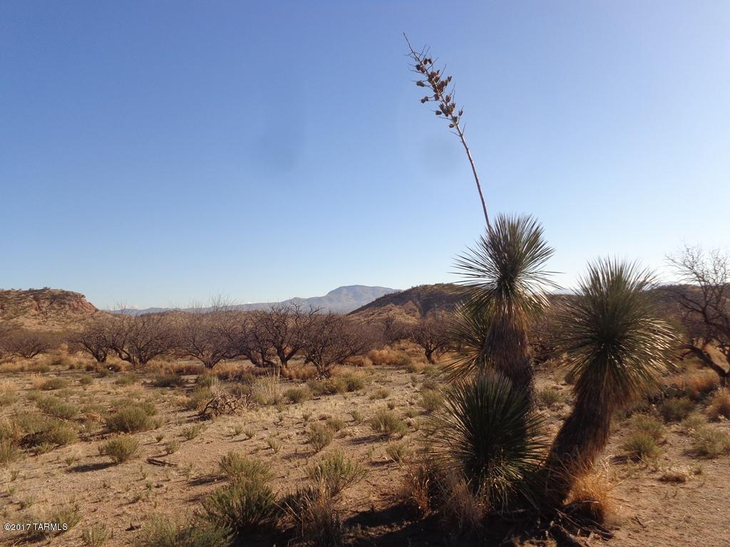 Ocotillo Road - Photo 1