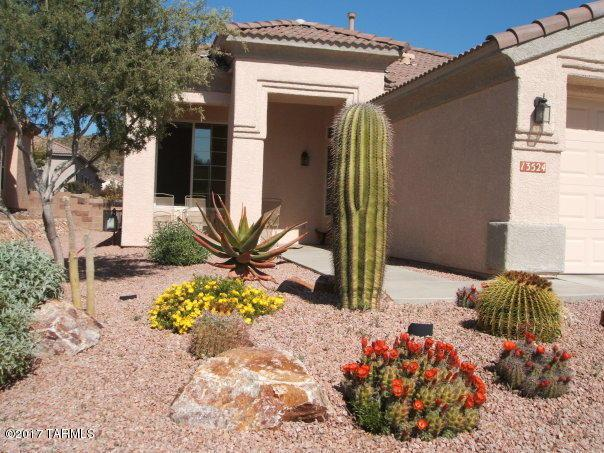 13524 N Heritage Canyon, Marana, AZ 85658 (#21716519) :: The Anderson Team | RE/MAX Results