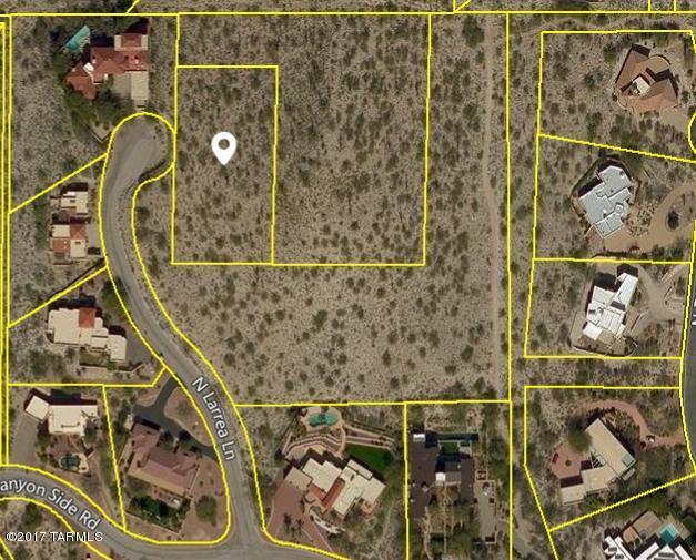 4362 N Larrea Lane, Tucson, AZ 85750 (#21719218) :: The Josh Berkley Team