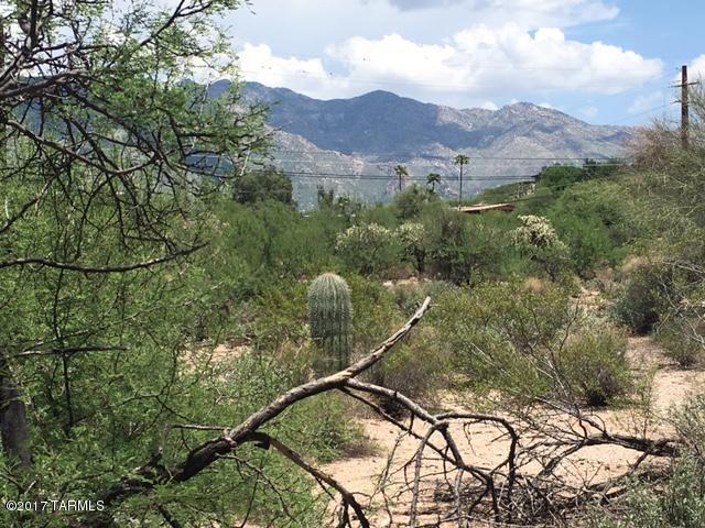 4544 N Flecha Drive #17, Tucson, AZ 85718 (#21720635) :: The Josh Berkley Team