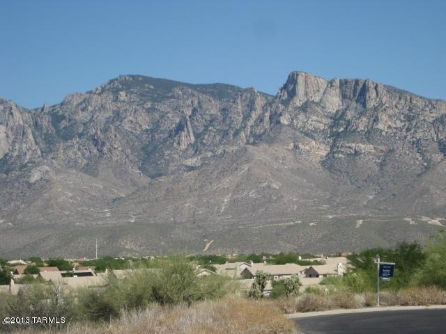 12686 N Vistoso View Place Lot#10, Oro Valley, AZ 85755 (#21724028) :: Long Realty - The Vallee Gold Team