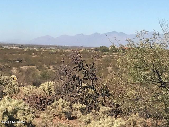 981 E Josephine Saddle Place #312, Green Valley, AZ 85614 (#21801928) :: Stratton Group