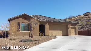 38616 S Running Roses Lane, Tucson, AZ 85739 (#21803952) :: RJ Homes Team