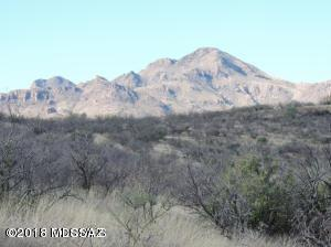 21 Western Saddle #16, Tubac, AZ 85646 (#21804619) :: Long Realty - The Vallee Gold Team