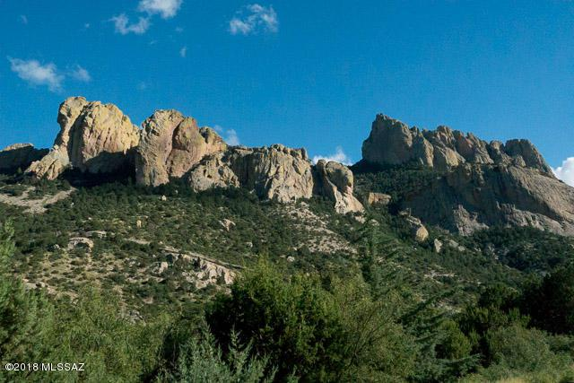 2558 S Cave Creek Road, Portal, AZ 85632 (#21807172) :: My Home Group - Tucson