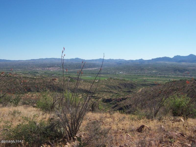 302 Camino Arenosa - Photo 1