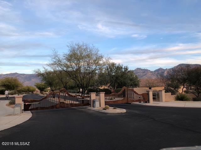 12979 N Camino Vieja Rancheria, Oro Valley, AZ 85755 (#21808240) :: Long Realty Company