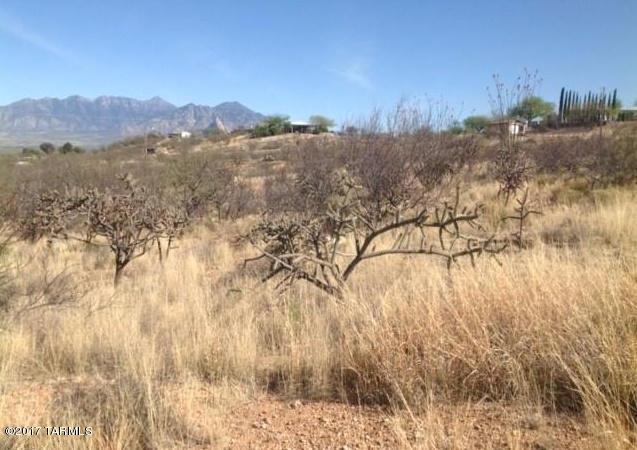 TBD Calle Ocho #118, Green Valley, AZ 85622 (#21808650) :: Keller Williams