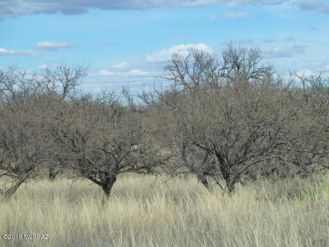 o S Palomina Place #90, Benson, AZ 85602 (#21810628) :: My Home Group - Tucson