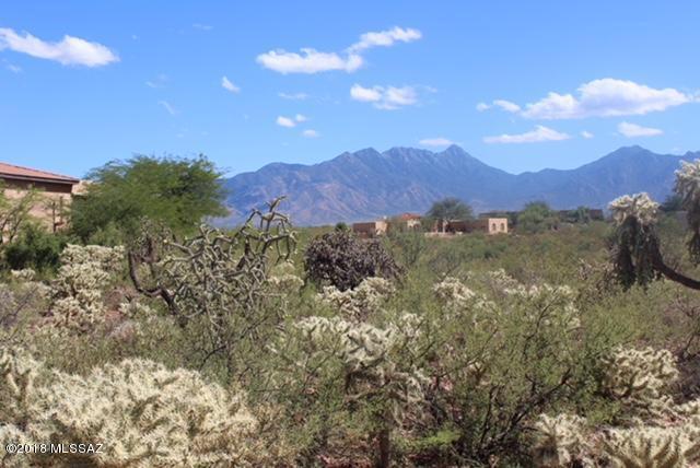 1128 E Josephine Saddle Place #207, Green Valley, AZ 85614 (#21812192) :: The Local Real Estate Group | Realty Executives