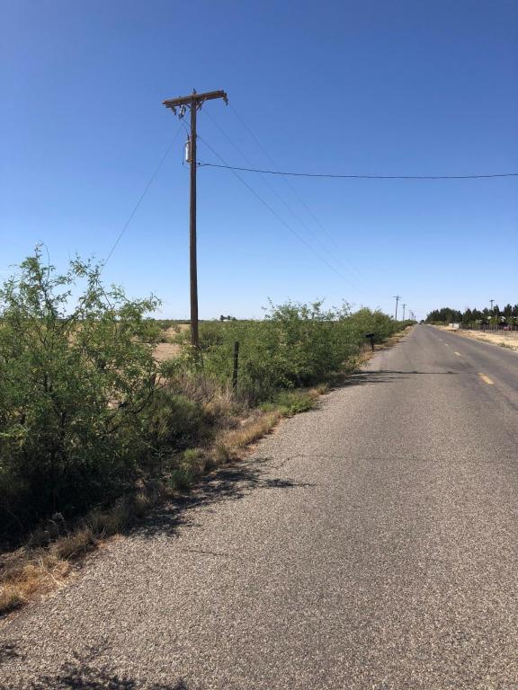 78.41 AC Joe Hines Road - Photo 1