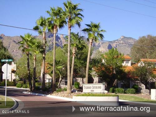 6445 Tierra De Las Catalinas - Photo 1
