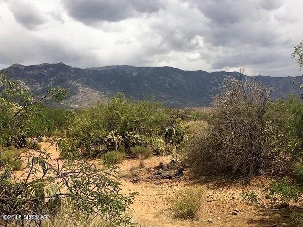 0000 E Pinal Street, Catalina, AZ 85739 (#21816494) :: Long Realty Company