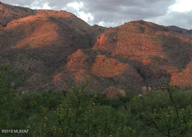 5800 N Kolb Road #14172, Tucson, AZ 85750 (#21816978) :: The KMS Team