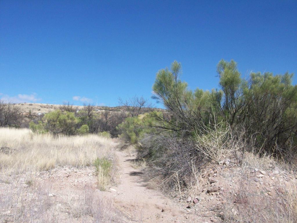 592 Peck Canyon Drive - Photo 1