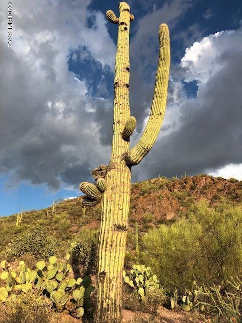6285 S Speaks Trail, Tucson, AZ 85746 (#21821859) :: The KMS Team