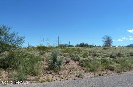 24261 Tonopah Trail - Photo 1
