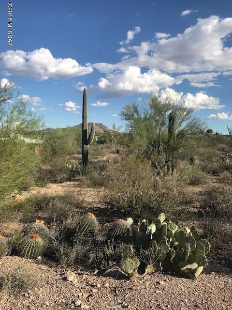 1504 N Plaza De Lirios #92, Tucson, AZ 85745 (#21824273) :: The Josh Berkley Team