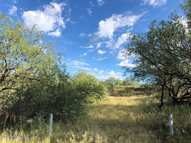 3160 N Canon Del Oro Drive #13, Nogales, AZ 85621 (#21824793) :: Long Realty Company