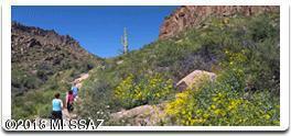 000 Linda Vista Road - Photo 1