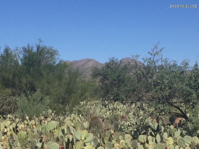 1601 W Beech Way 067B, Tucson, AZ 85755 (#21826316) :: The Josh Berkley Team