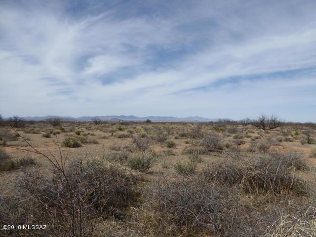 52 acres Off Hwy 181 #38, Pearce, AZ 85625 (#21827689) :: Long Realty - The Vallee Gold Team