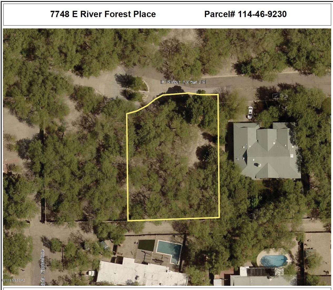 7748 River Forest Place - Photo 1
