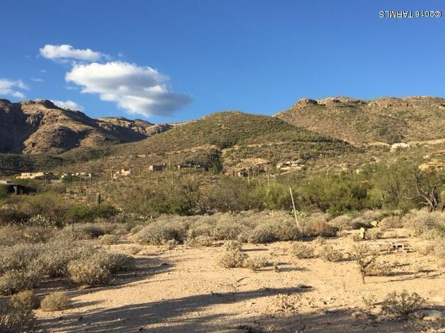 12045 E High Saguaro Place #0, Tucson, AZ 85749 (#21832126) :: The Josh Berkley Team
