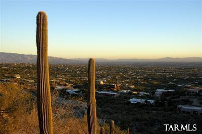 4266 E Playa De Coronado #46, Tucson, AZ 85718 (#21832392) :: Long Realty - The Vallee Gold Team