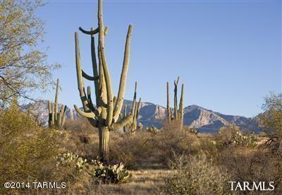 0 N Camino Del Fierro #3, Tucson, AZ 85742 (#21832769) :: Long Realty Company