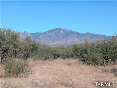 Address Not Published, Tubac, AZ 85646 (MLS #21833258) :: The Property Partners at eXp Realty