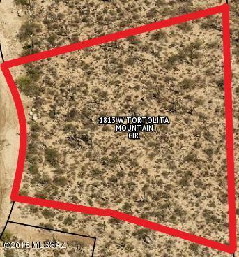 1813 Tortolita Mountain Circle #499, Oro Valley, AZ 85755 (#21833374) :: Long Realty - The Vallee Gold Team
