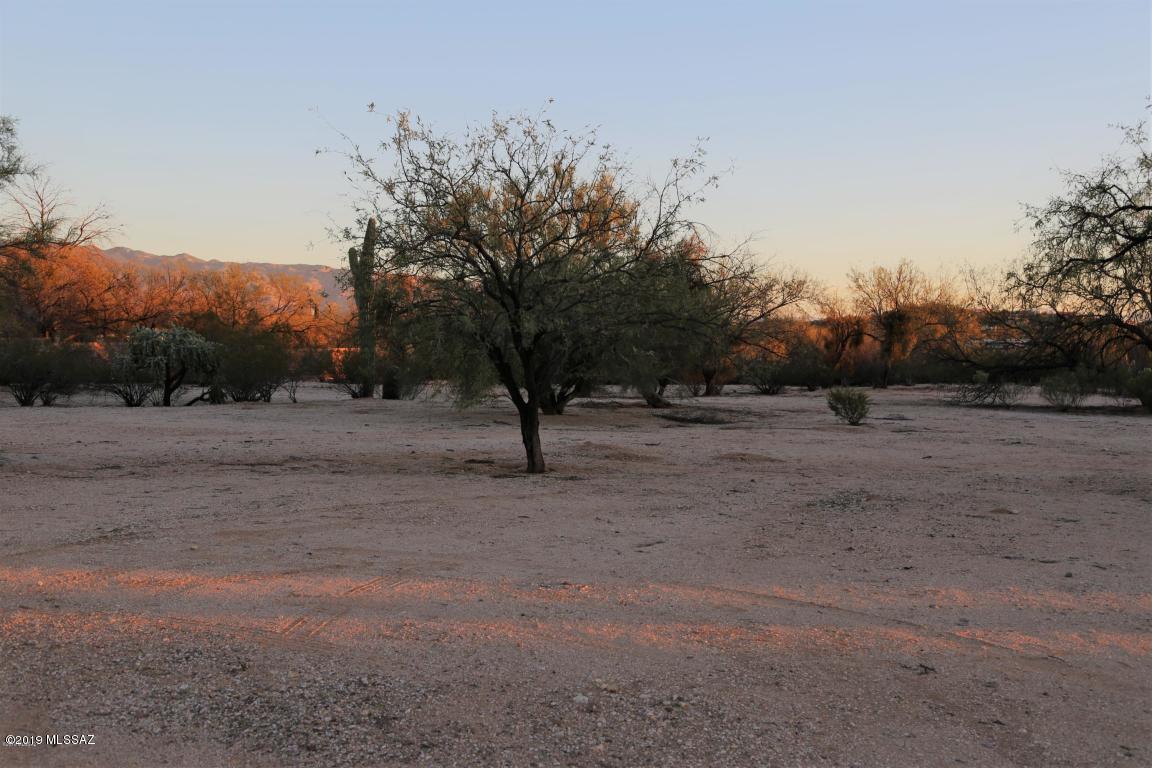 9700 Walnut Tree Drive - Photo 1