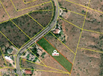414 Camino Canoa #10, Rio Rico, AZ 85648 (#21903104) :: Gateway Partners at Realty Executives Tucson Elite