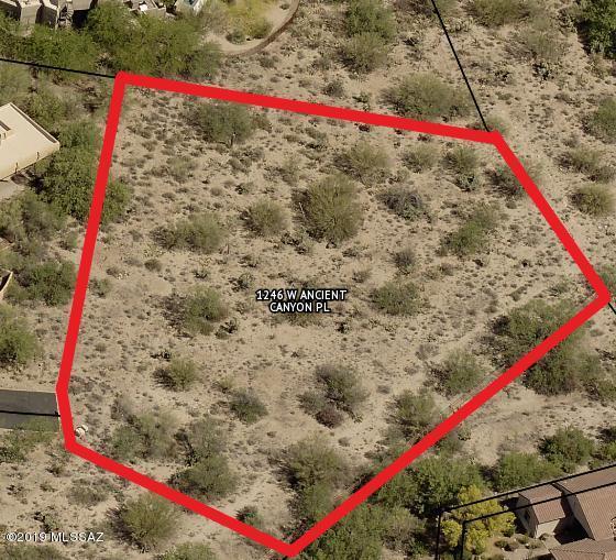 1246 W Ancient Canyon Place #89, Oro Valley, AZ 85755 (#21904414) :: Long Realty Company