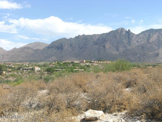 5403 N Placita Gato Montes #28, Tucson, AZ 85718 (#21904713) :: The KMS Team
