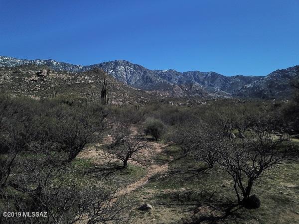 5445 E Golder Ranch Drive, Tucson, AZ 85739 (#21905199) :: The Josh Berkley Team