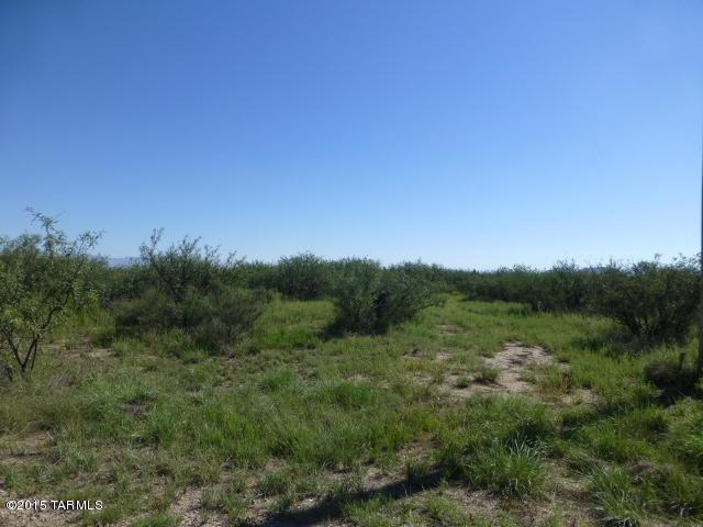 5 acres N Cottontail (West 5 Acres) Lane #0, Cochise, AZ 85606 (#21905634) :: Long Realty Company