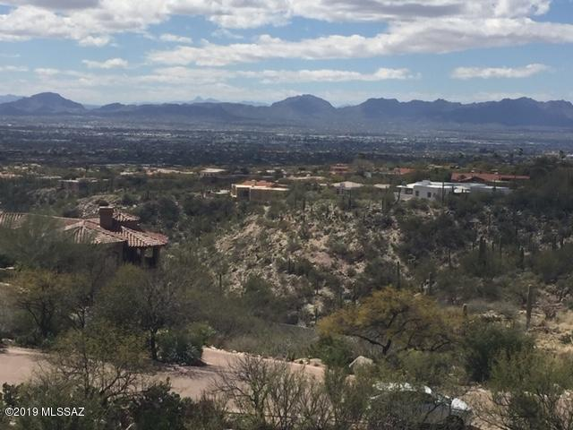 7358 N Secret Canyon Drive #18, Tucson, AZ 85718 (#21908770) :: Long Realty - The Vallee Gold Team
