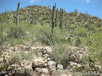 13970 N Jims Deadend Place #34, Marana, AZ 85658 (#21910472) :: Long Realty - The Vallee Gold Team