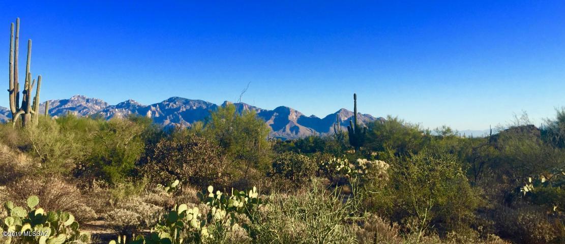 1138 Tortolita Mountain Circle - Photo 1