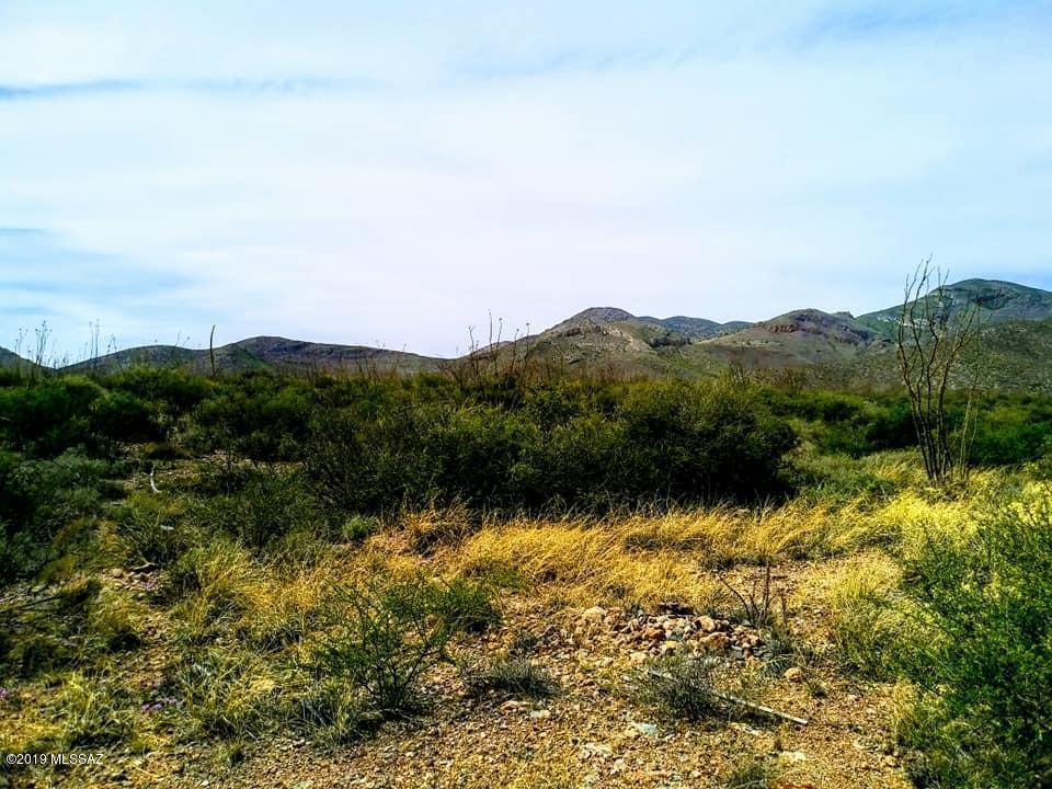 Lot 88 Cochise Lane - Photo 1