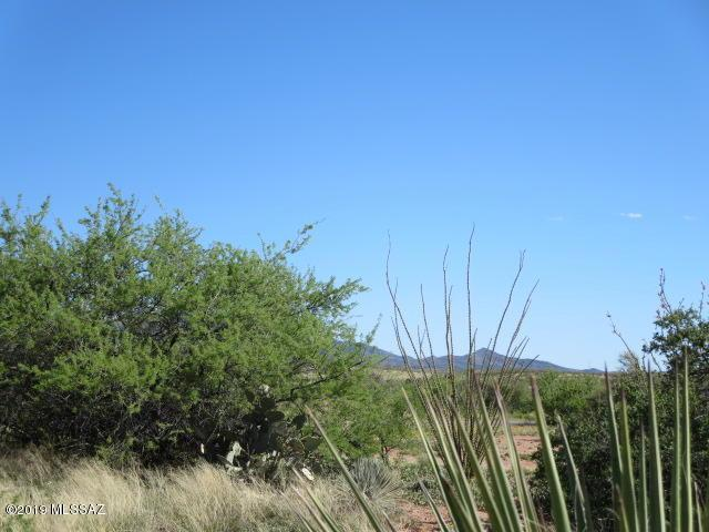14 ac S Osage Trail #346, Benson, AZ 85602 (MLS #21912840) :: The Property Partners at eXp Realty