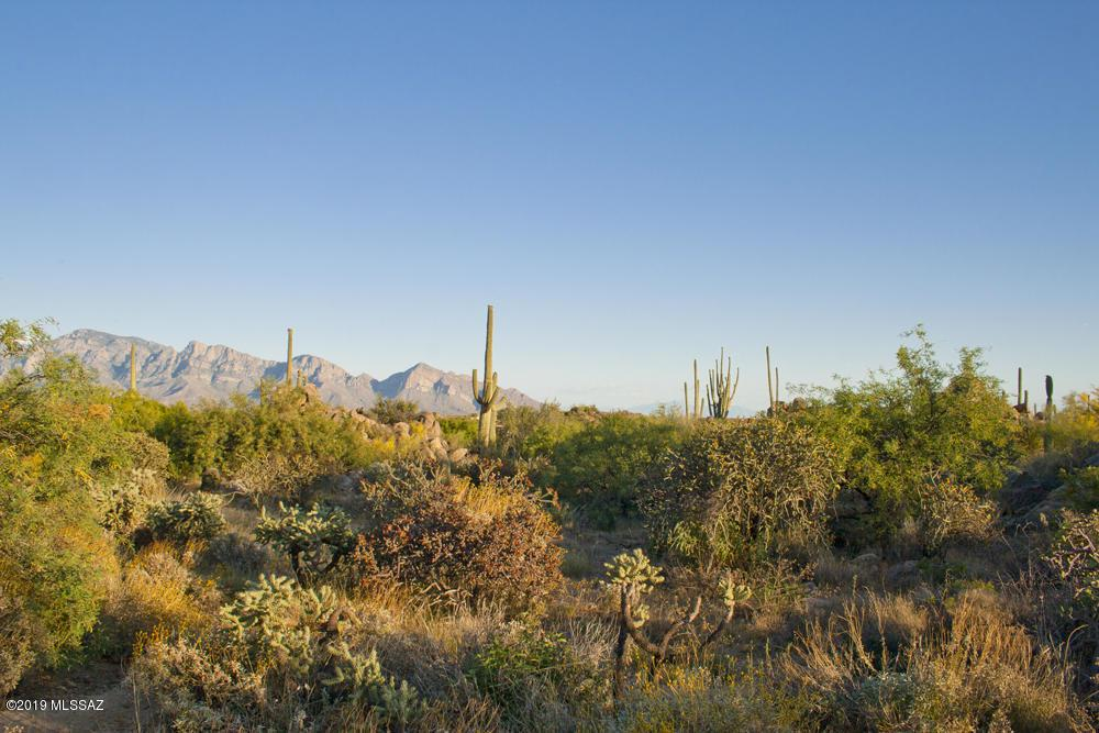 1197 Tortolita Mountain Circle - Photo 1