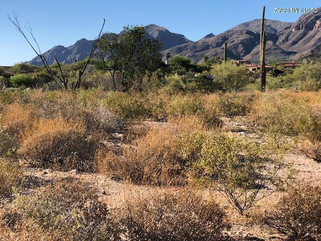 5656 N Via Elena #320, Tucson, AZ 85718 (#21914448) :: Realty Executives Tucson Elite