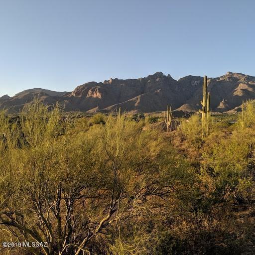 6051 N Vista Valverde #1, Tucson, AZ 85718 (#21915150) :: Realty Executives Tucson Elite