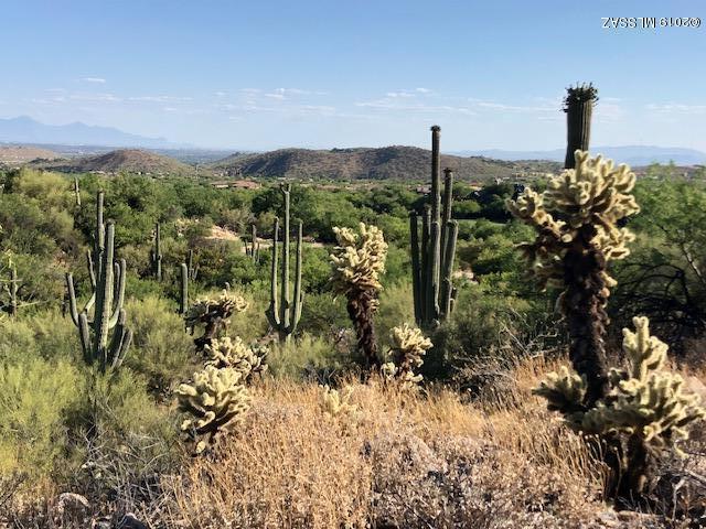 6391 N Canon Del Pajaro #54, Tucson, AZ 85750 (#21915374) :: Long Realty - The Vallee Gold Team