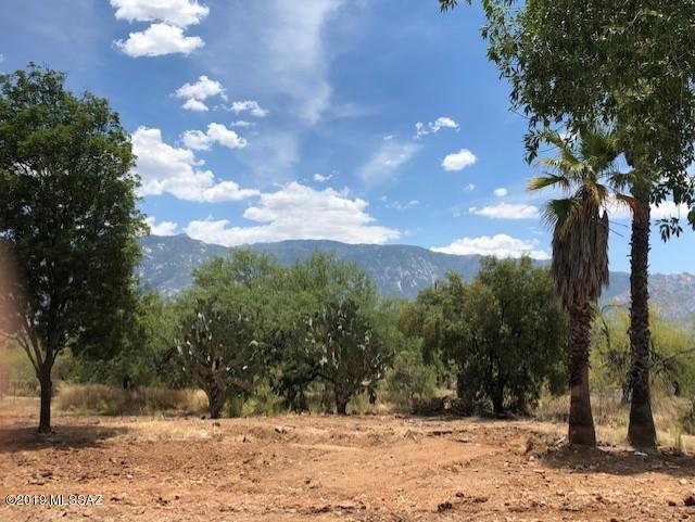 16315 N Forecastle Avenue, Tucson, AZ 85739 (#21915715) :: Long Realty Company