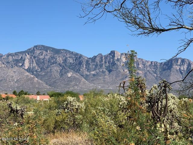 14708 N Quiet Rain Drive #35, Oro Valley, AZ 85755 (#21915962) :: Long Realty Company
