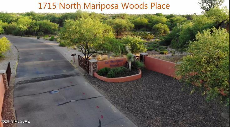 1715 Mariposa Woods Place - Photo 1